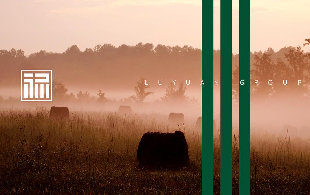 农业集团形象设计,VI设计,深圳标志设计公司