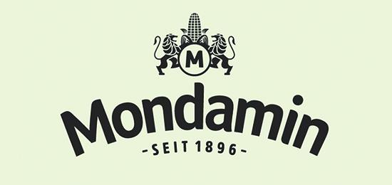 深圳标志设计公司分享-蒙达标志设计升级