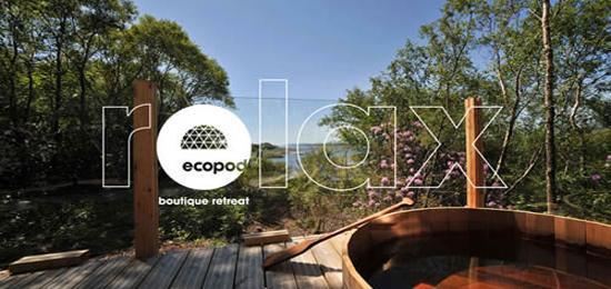 环保会所Ecopod的标志设计